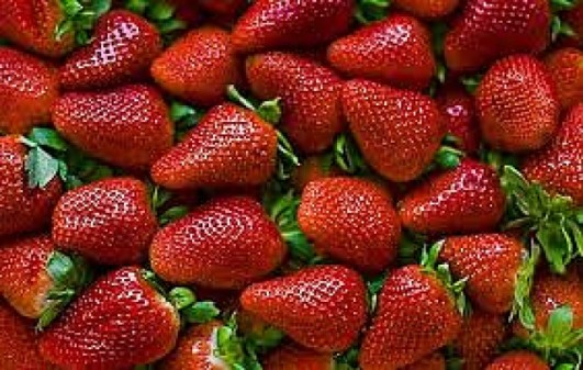 Frutillas_tentacion