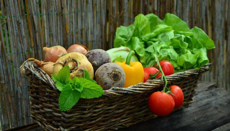FrutayVerd Organica